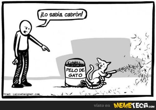 Lo sabía! / memeteca.com